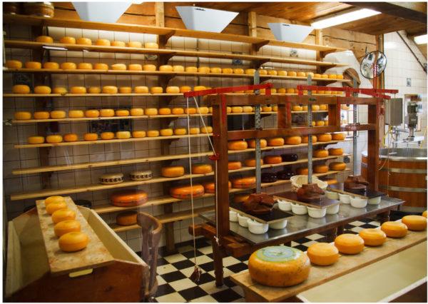 Luralite Cheese Factory insitu